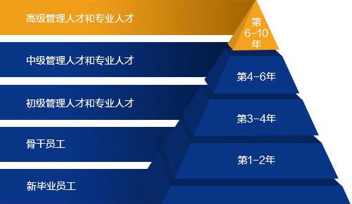 11人才培养_03.jpg